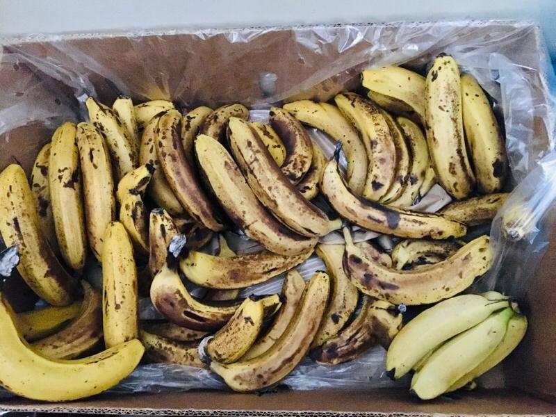 バナナと田中。