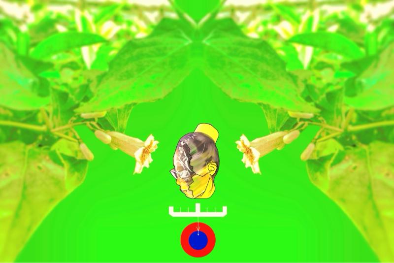 ♋️354:身体面における健常と障害の境の消失/短気が話すとこうなる雑なセフィロトの樹