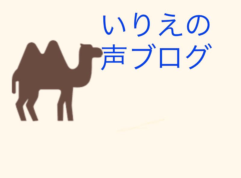 #7 映画・細野晴臣ドキュメンタリー No Smoking の感想