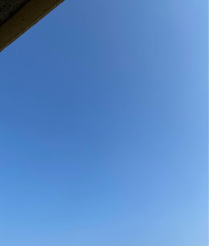天気のいい日はベランダから。昨日のテレビを観て様々な奇跡を感じた話をします。