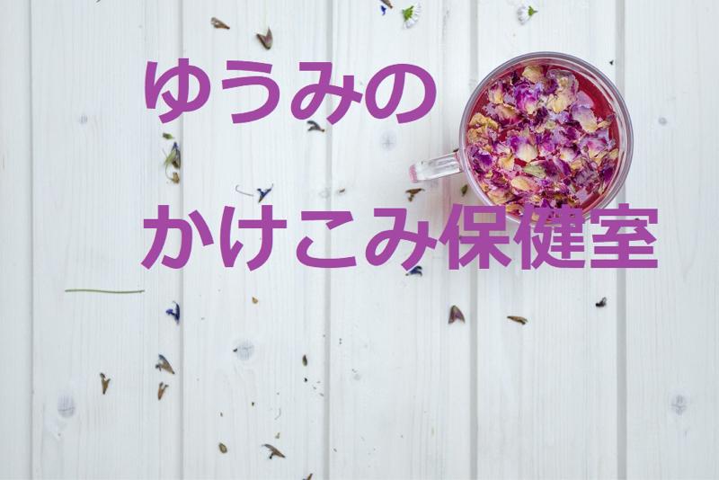 #9.薬膳のプロが実際に買ったスーパーの袋の中を大公開!!【後編】