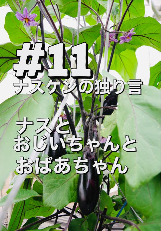 #11「ナスとおじいちゃんとおばあちゃん」