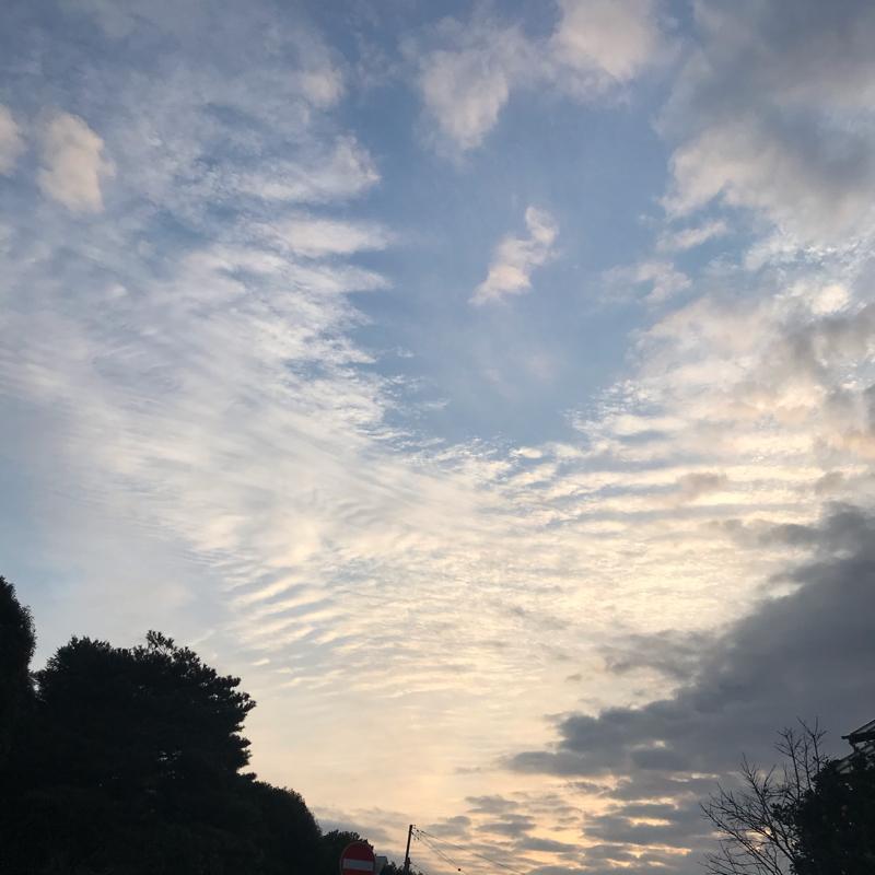 12/19 合気ゼミと縁について