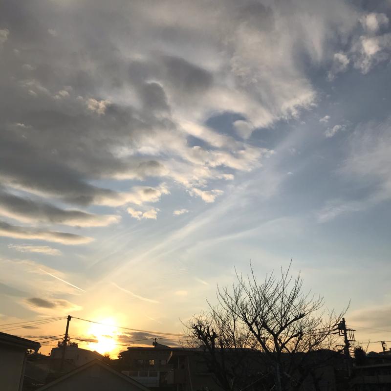 1/16 復活のきざし
