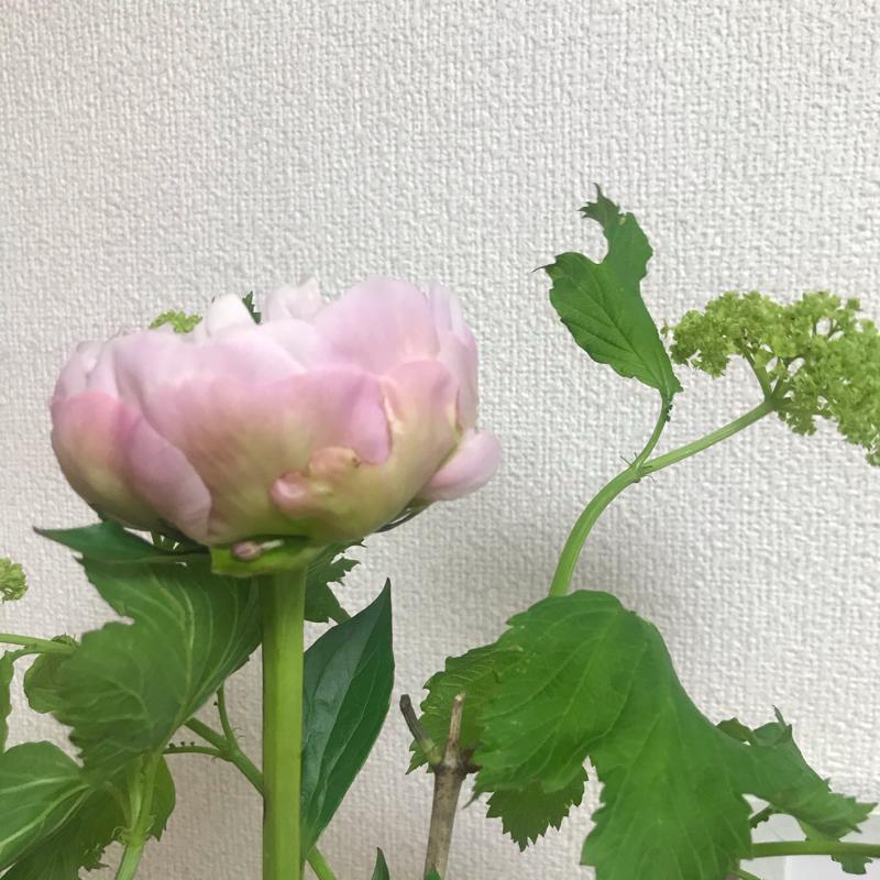 5/22 自分を深く知る