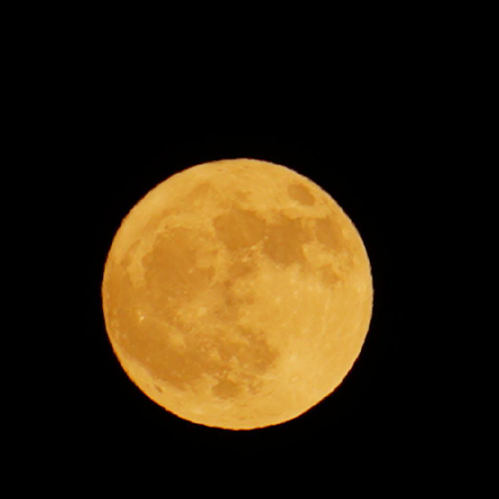 第141弾! ギリシア神話アレコレ ギリシア神話的月の女神は誰??
