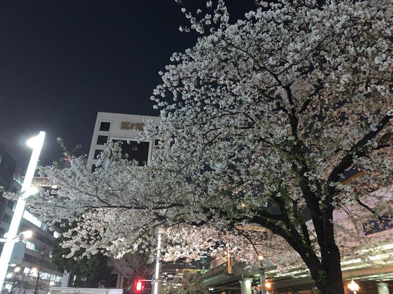 #16 春の特別編②〜YAZAWAトーク延長戦