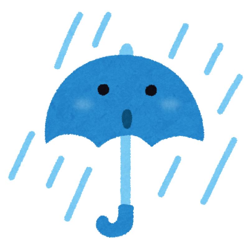 ぼっちは雨の日、いい年してこういう暇つぶしするんだって。