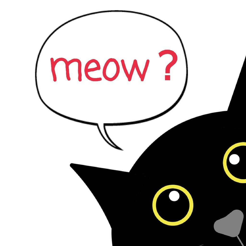 黒猫さんに「怒」😤💢