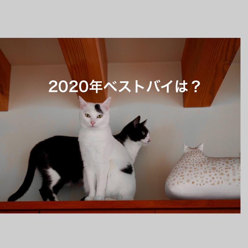 #373 2020年のベストバイは?