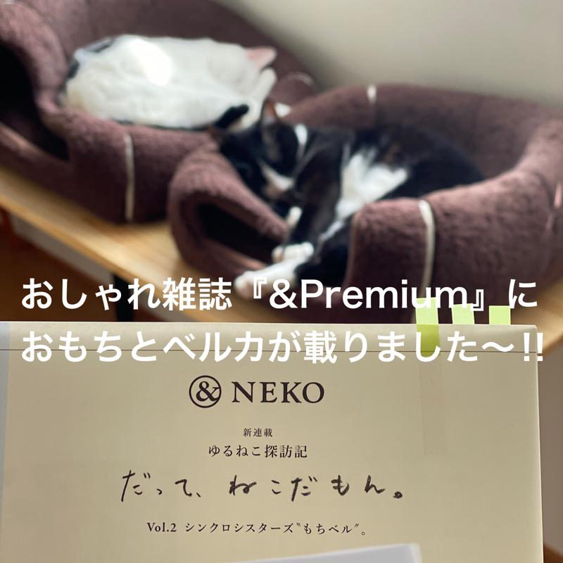 #424 雑誌『&Premium』にもちベルが掲載されました〜‼︎