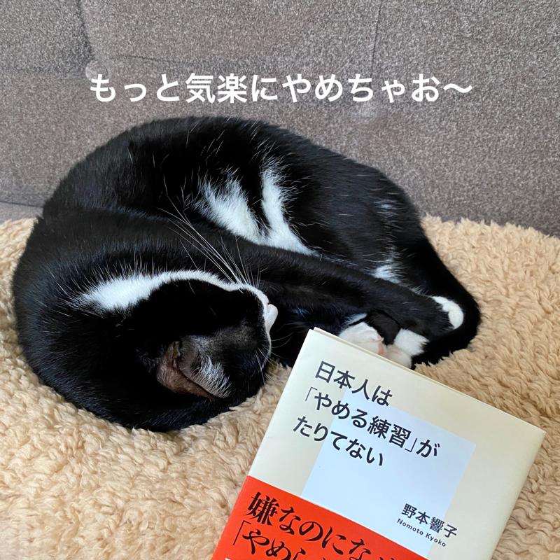 #623 日本人はやめる練習がたりてないよ〜姉妹トークvol.1