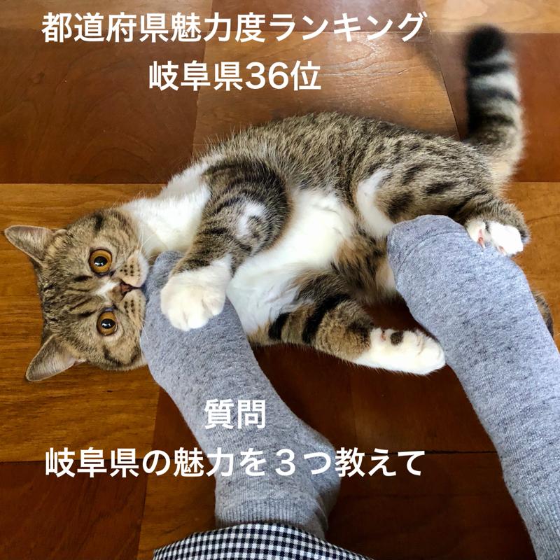 #659 岐阜県の魅力を3つ教えて
