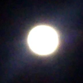 #3 💛叶うといいな。可愛い願いにほっこりした夜。🌃✨月に願いを✨⛩️