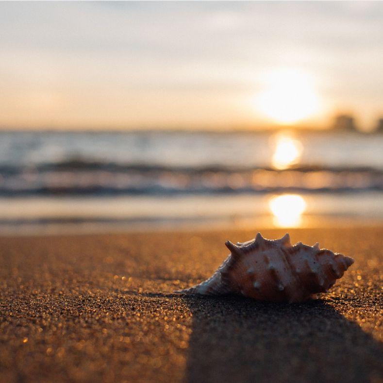 #99🎤砂浜(cathedral ballad)/とんとんのアカペラジオ①