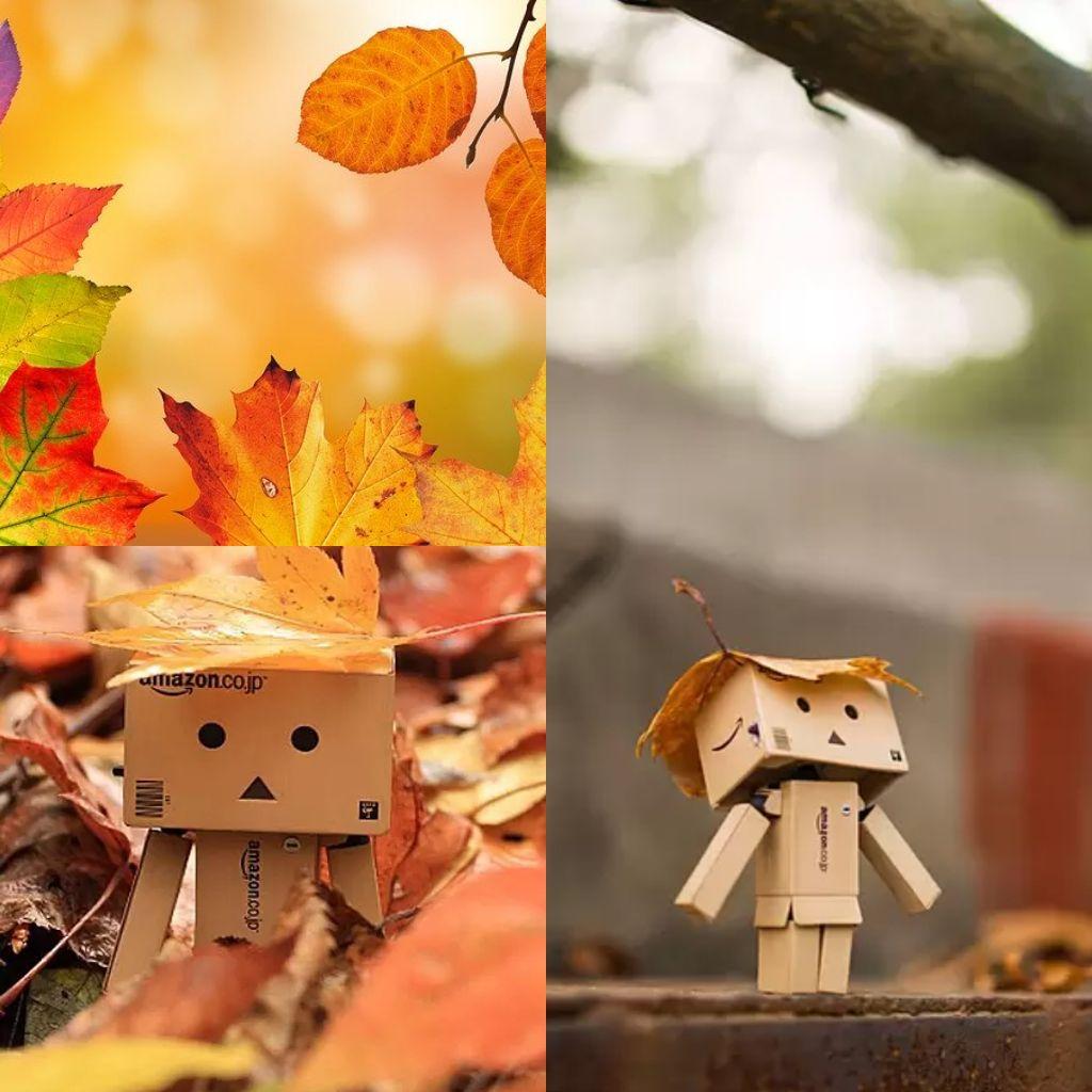#146🔷私の秋はリセットの秋、旅立ちの秋🍁①