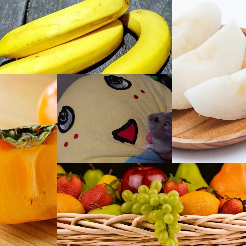 #157🔷中秋の名月とハンターズムーン/好きな果物ベスト3