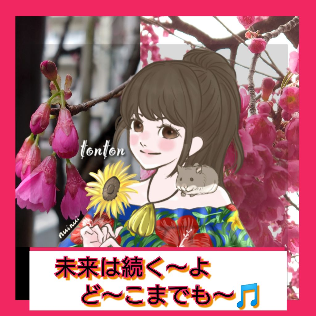 #282🌈寒緋桜と3.11の打ち上げ花火/私の10年 振り返り