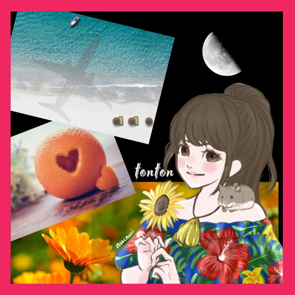#392🔶柴咲コウさんの魅力をアカペラと共に語る❣️