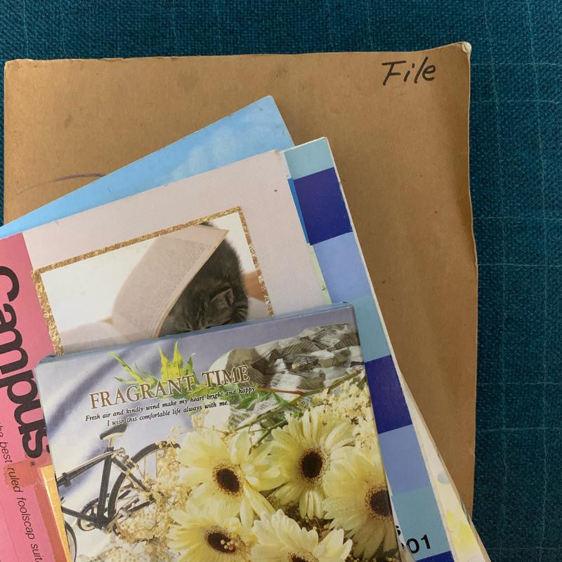 #10 1993年2月のある中2女子 昔の日記朗読第2回目