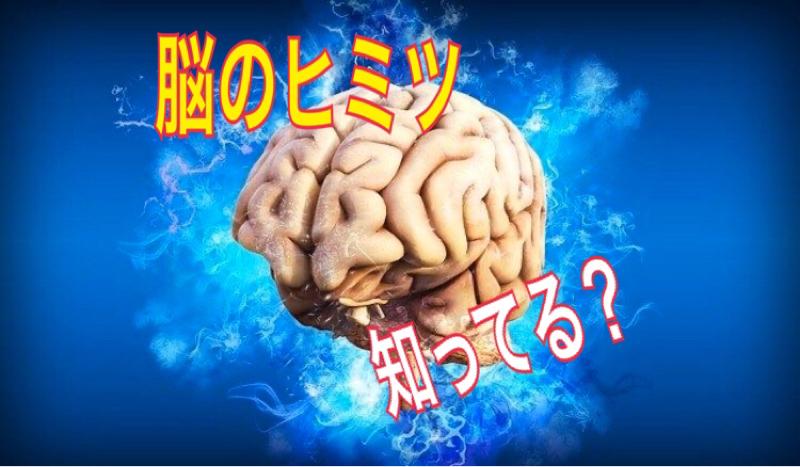 #3  もっと早く知ってれば何か違ったかもしれない脳の話