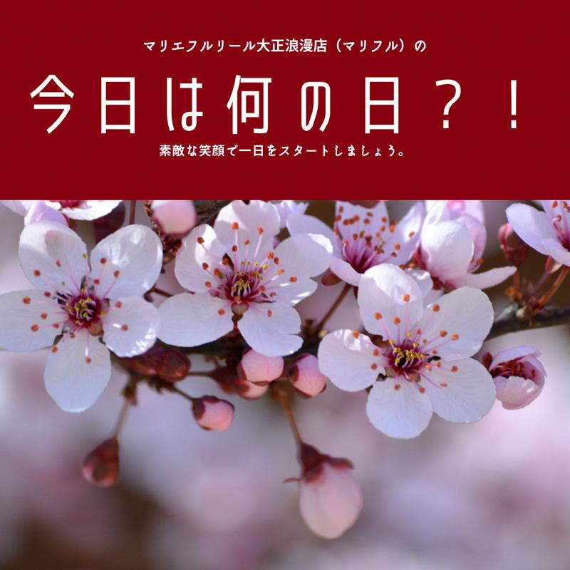 梅澤アンナの大正ロマンお喋り喫茶#168 本日はおひなまつり ピンクの配色を楽しもう!