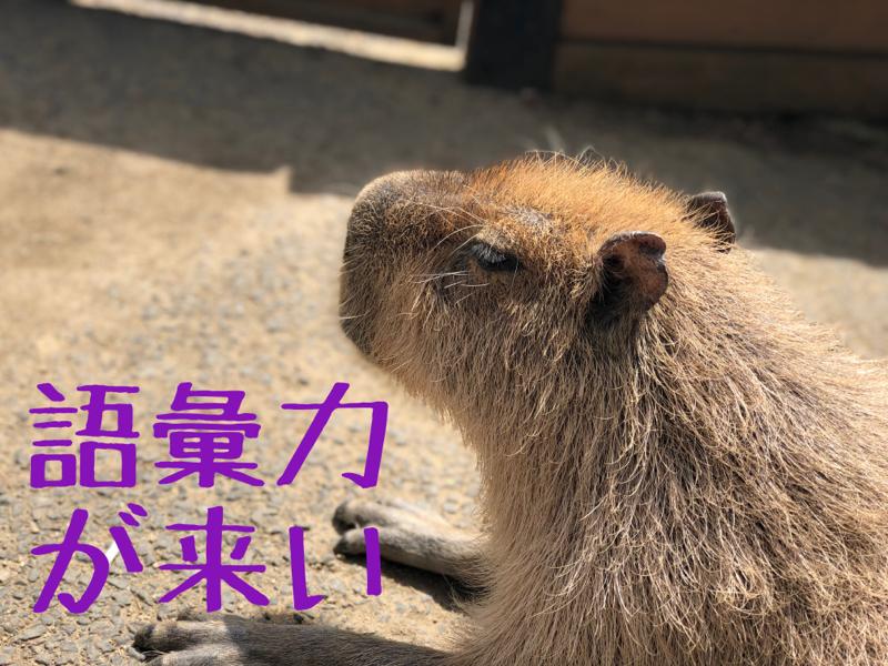 #9 匂い...それは妄想を(ry