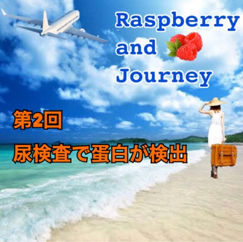 Raspberry and Journey 第2回尿検査で蛋白が検出