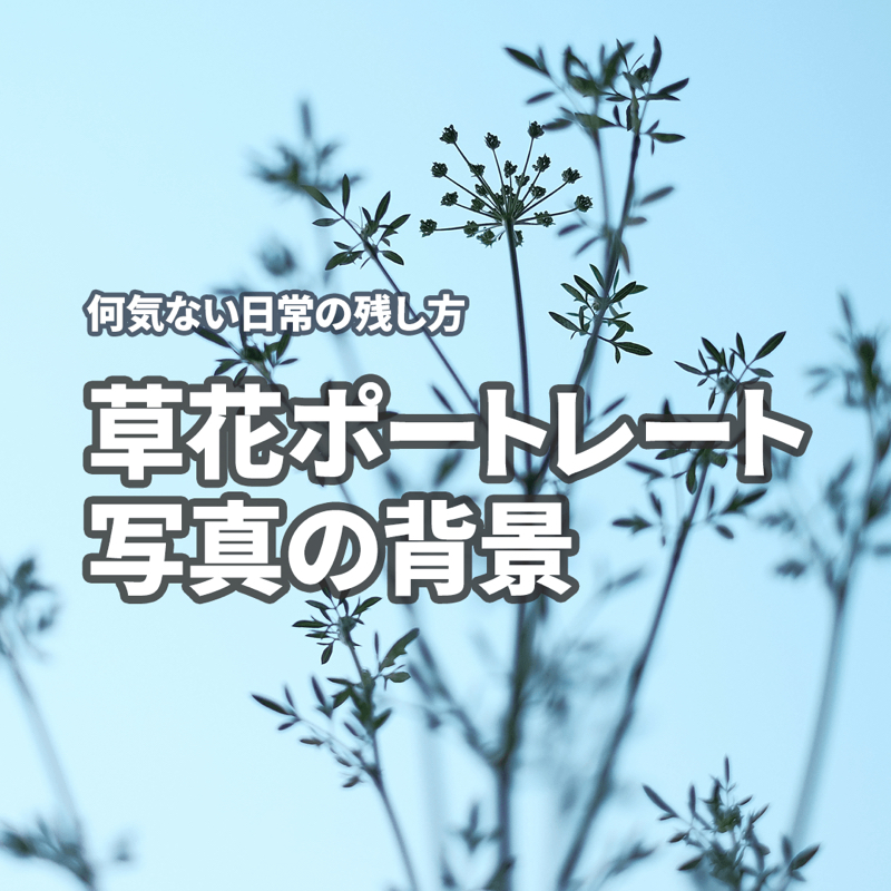 草花ポートレート写真の背景