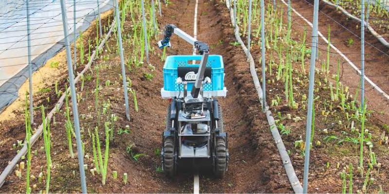 自動収穫ロボ‼︎【inaho】