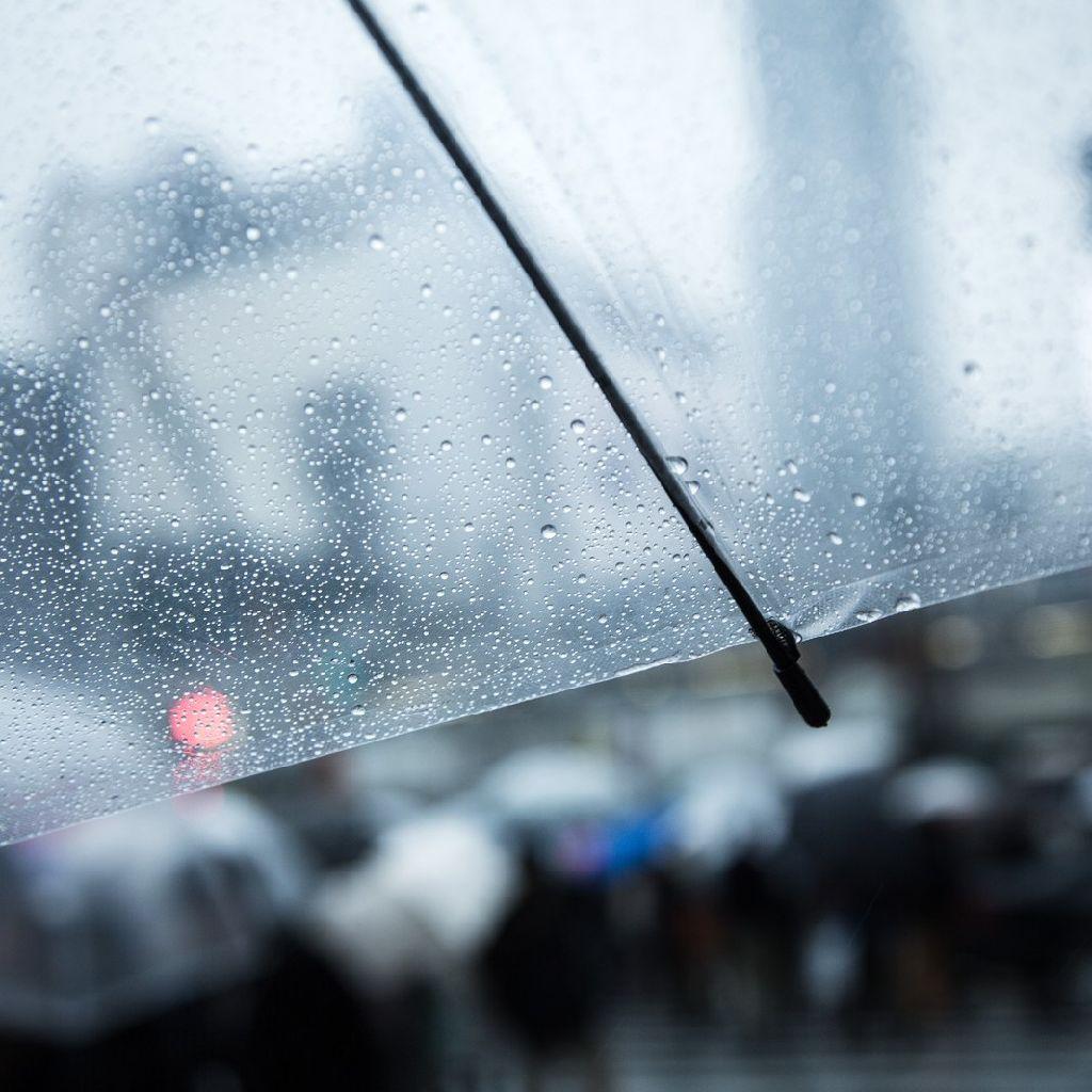 大雨特別警報を振り返って☔