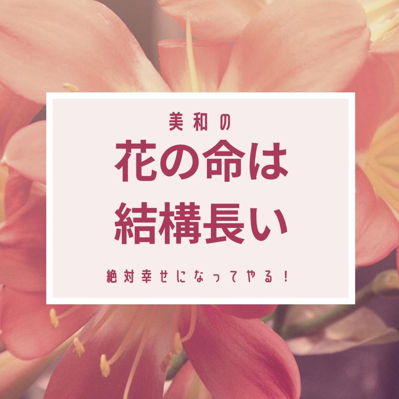 美和の「花の命は結構長い」