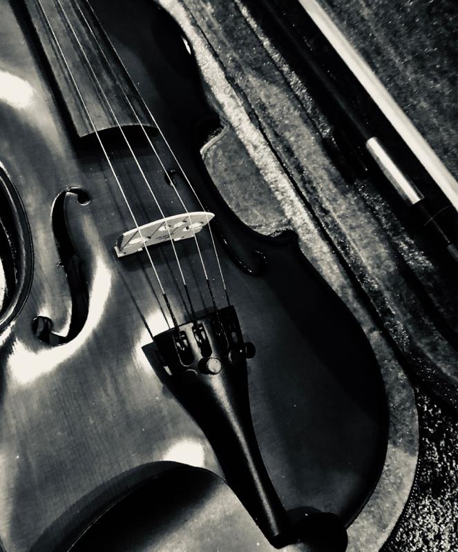 #1  自己紹介 私とバイオリン