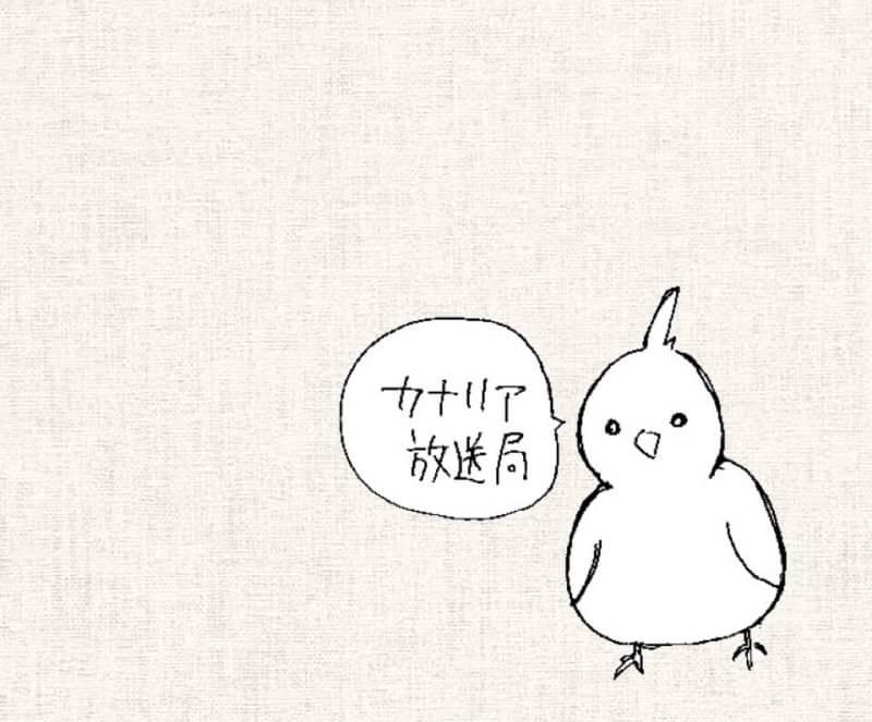カナリア放送局 #1 自己紹介