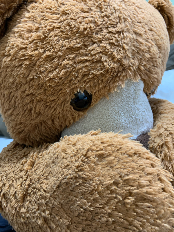 第27回目 モネ提唱!一人一熊政策!