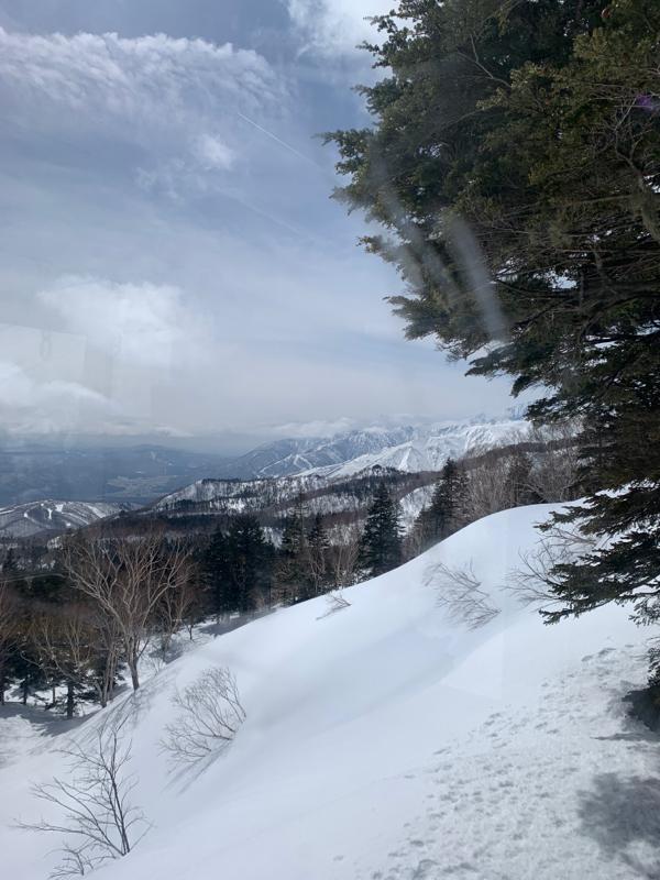 栂池ロープウェイからスキーで林道へ