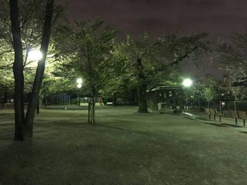 夜の公園で|ω・`)