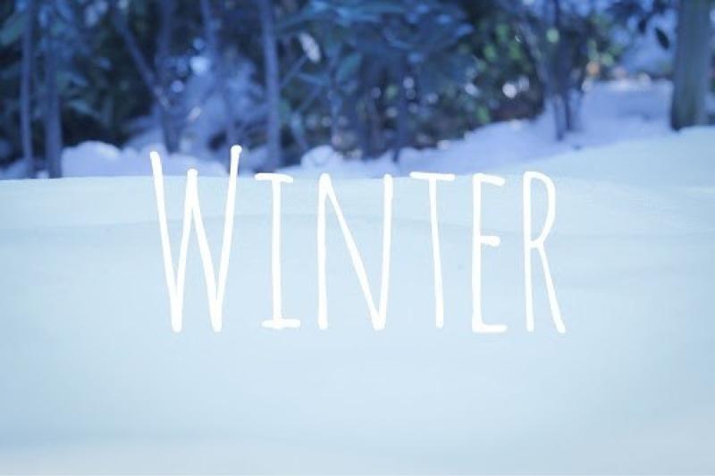 冬が来ると思い出す曲「White Love /SPEED 」