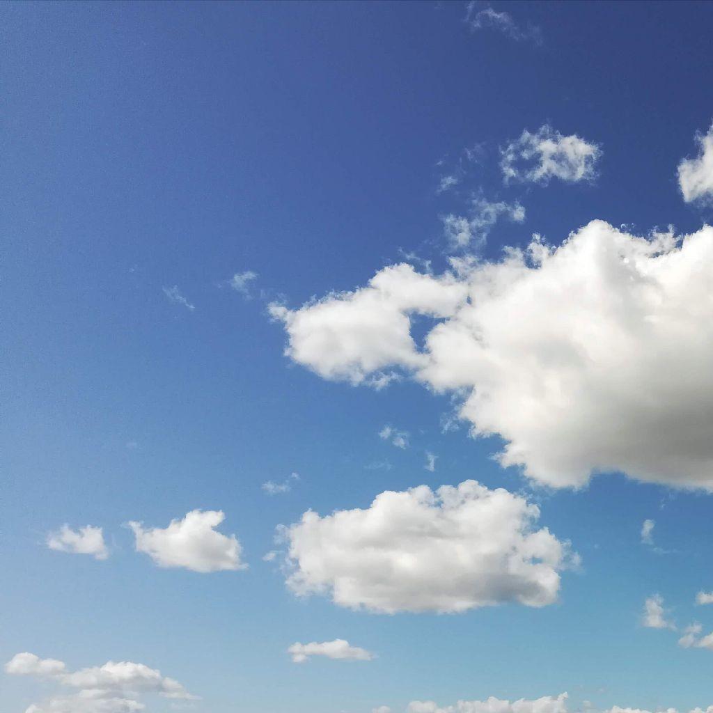 #122 タピオカとカレーと日傘