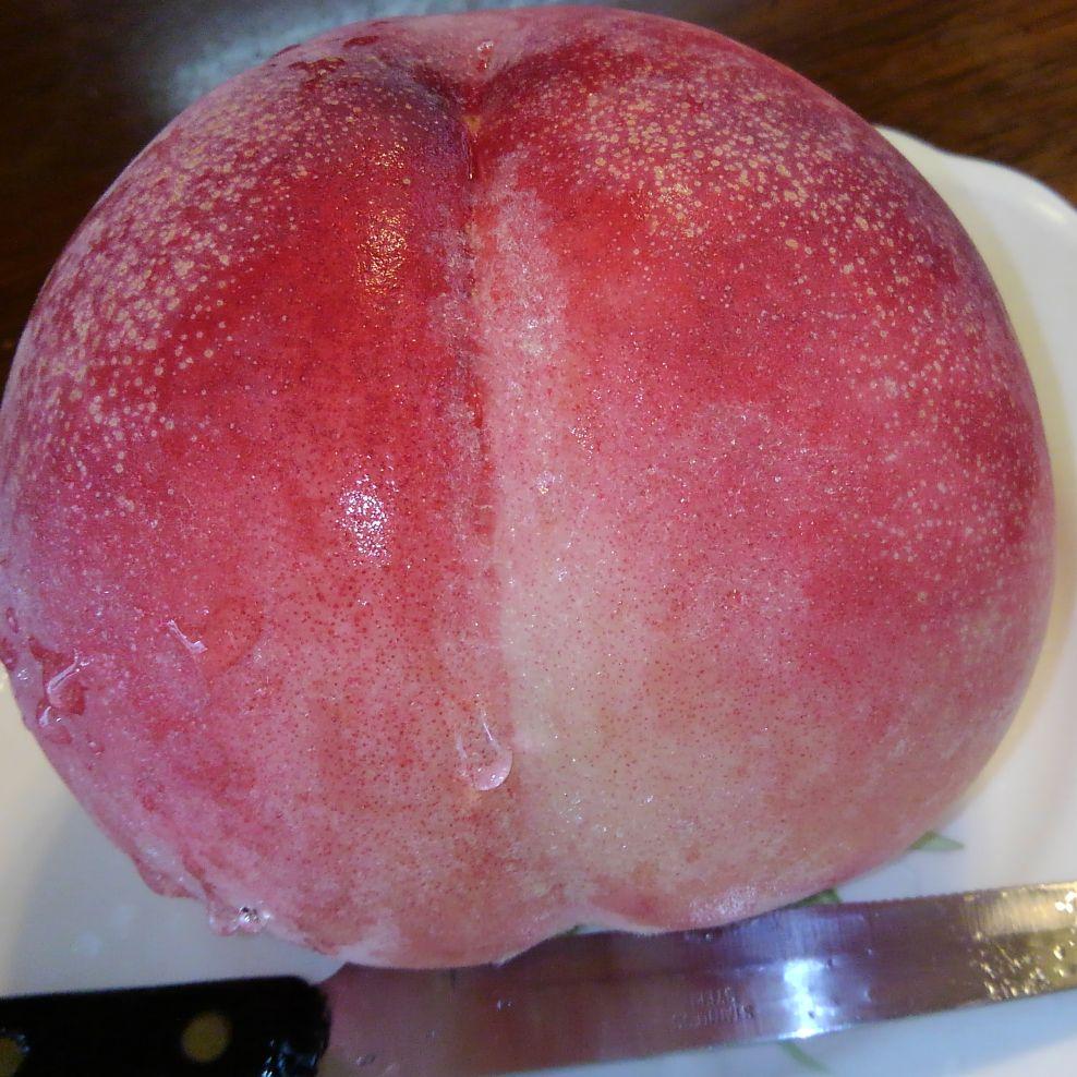 ep.16)梅雨あけた 大きな桃を 食べました
