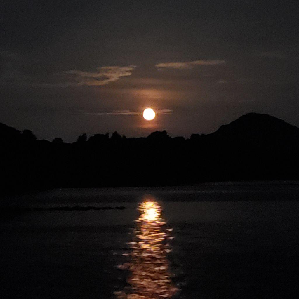 #17 日記。お月見しながら。