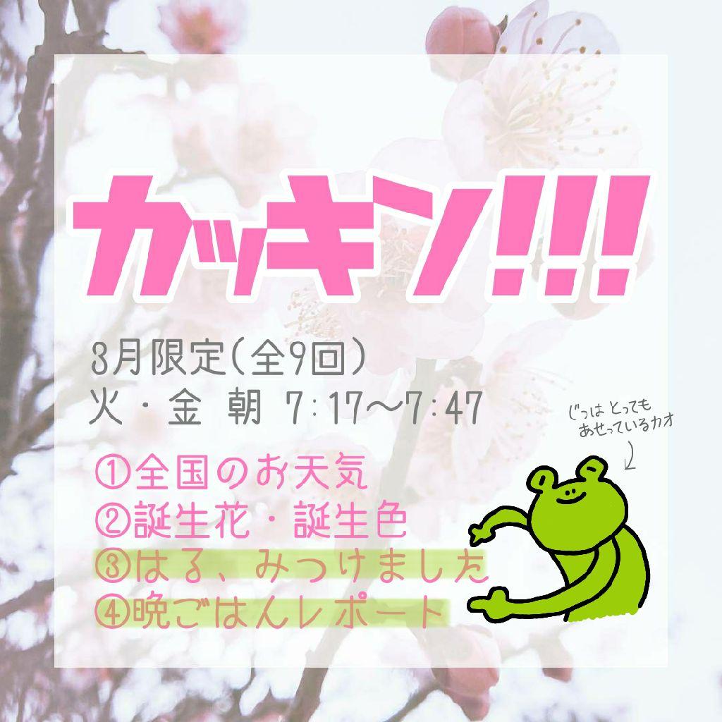 #110 カッキン!!!🌸⑤~⑨とアーカイブ公開のおしらせ