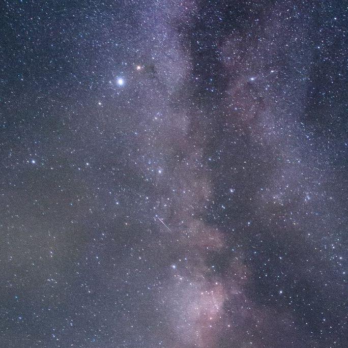 雑な12星座占い 5月前半