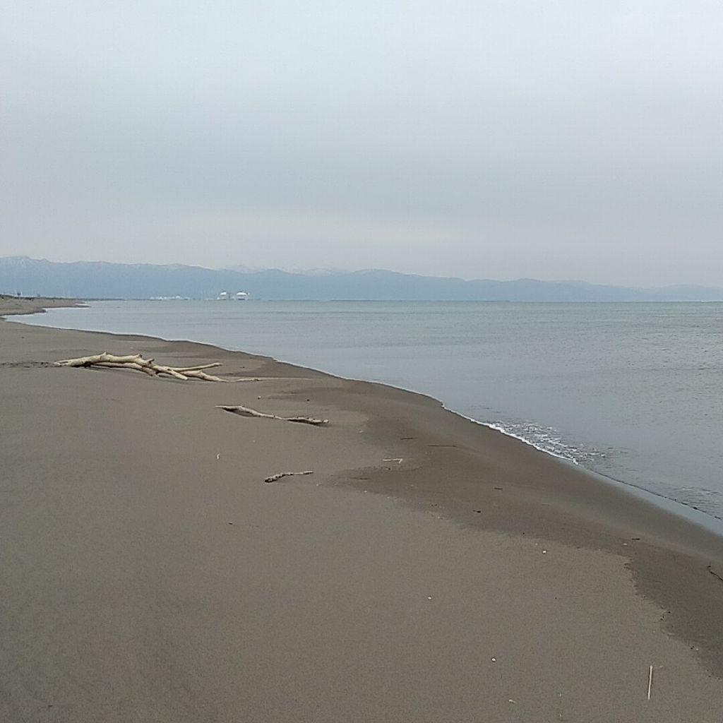 【第9回】海に来ちゃった