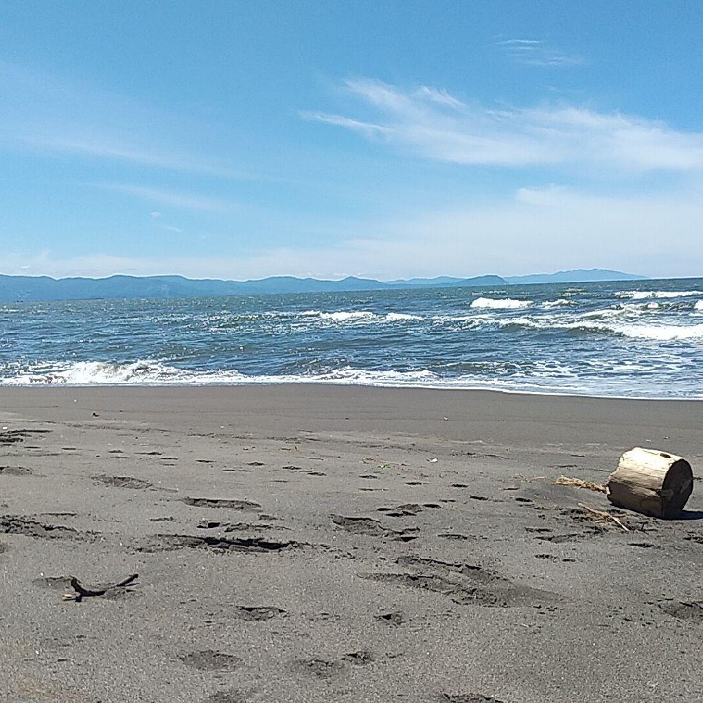 【第19回】海に来ました