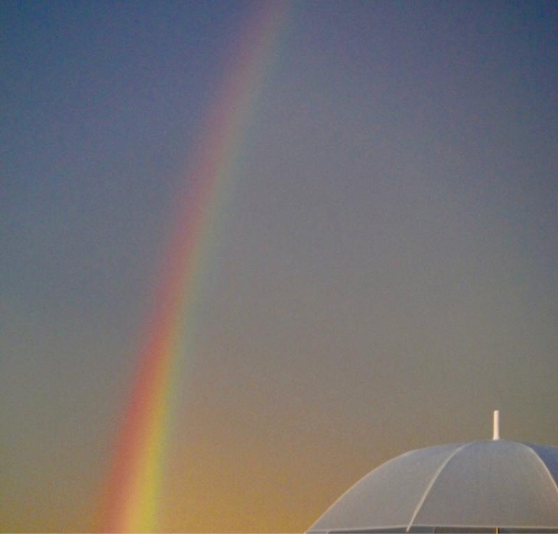#081  君は虹を見たか?🌈