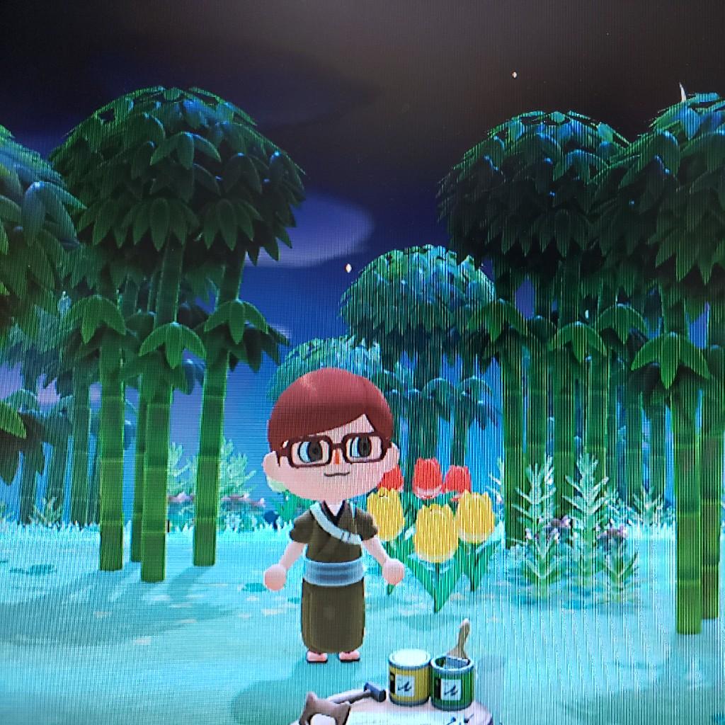 【4】あつ森:レア島にきた!やったぁ!(シンプルなタイトル)
