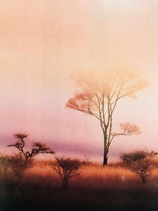 第93回短詩 「空の色は皆の心の色」九神未来作