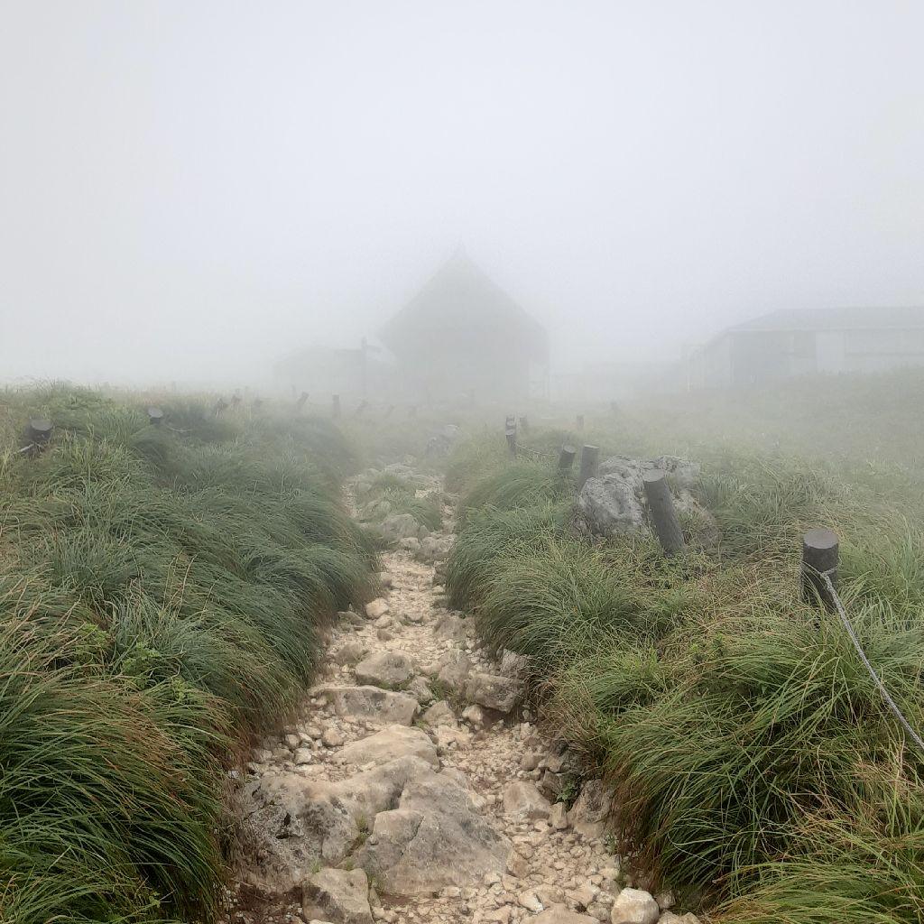 No.376 富士山トレーニング / 真夏の伊吹山((゚□゚;))
