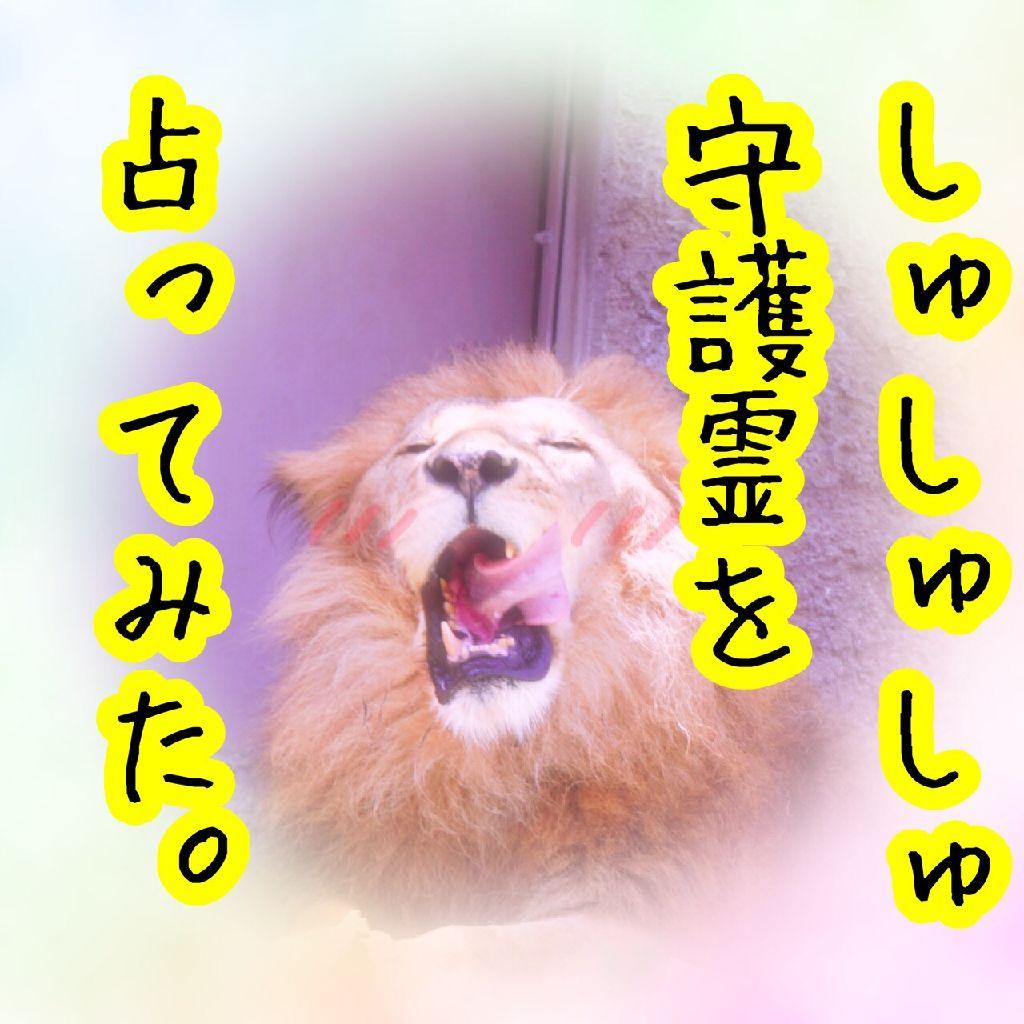 #045_しゅしゅしゅ守護霊さんを占ってみた話!